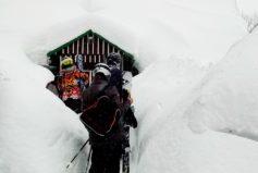 Roubenka ve sněhovém hávu...